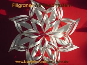 Filigraner-Weihnachsstern-weiss2