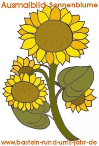 Sonnenblumen Ausmalbild