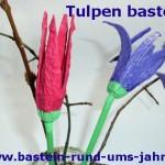 Tulpe aus Eierkarton
