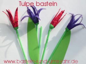 Tulpe aus Eierkarton in rot, violett, lila und blau