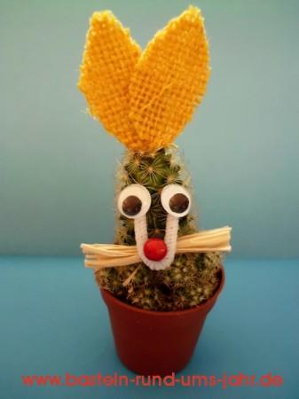 Osterhase Kaktus