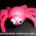 gruselige kleine Spinne als Dekoration zu Halloween in rot