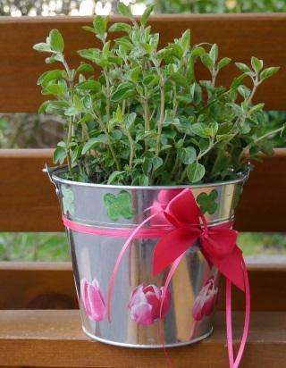 Blumentopf zum muttertag gestalten basteln rund ums jahr for Blumentopf gestalten