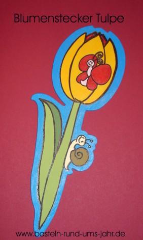 Blumenstecker Tulpe